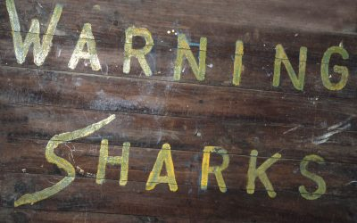 Panneau warning sharks